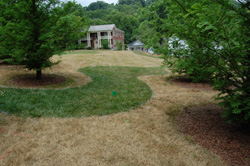 Monument Park paths and landscaping marked out